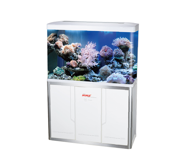 NEW FASHION AQUARIUM